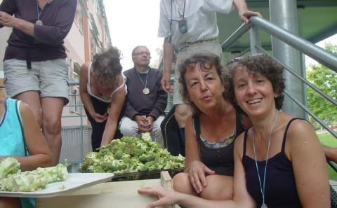 épluchage des légumes bio